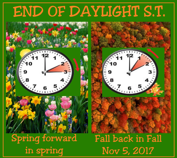 8 Things You May Not Know About Daylight Saving Time